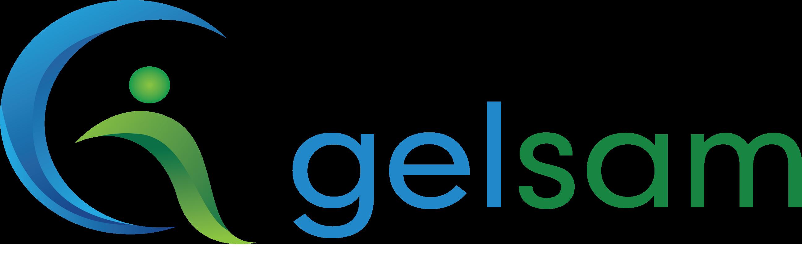 logoGelsam